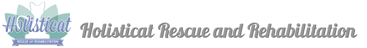 Holisticat Rescue and Rehabilitation